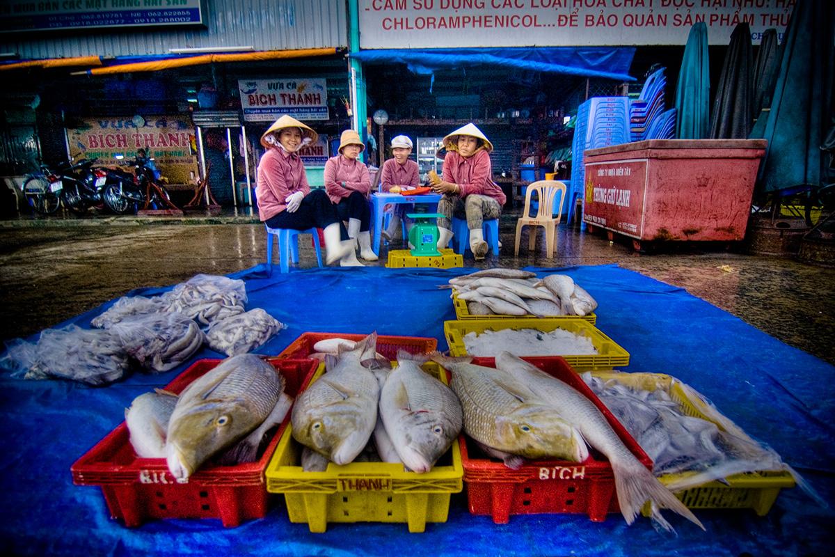 экскурсии во вьетнаме рыбалка
